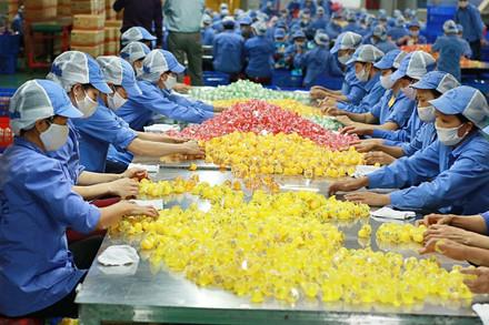 Người lao động thực hiện sàng lọc sản phẩm thạch trước khi đóng gói